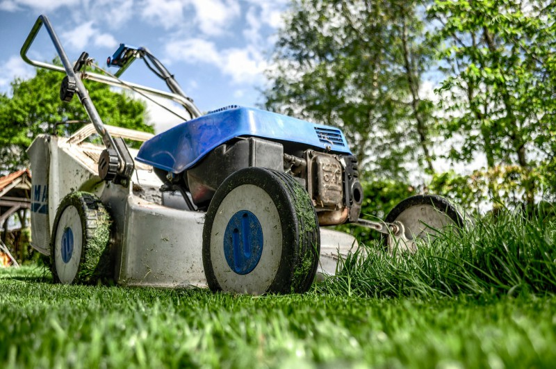 Pravilno gnojenje trave
